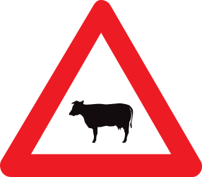 Traffic sign of Belgium: Warning for cattle on the road